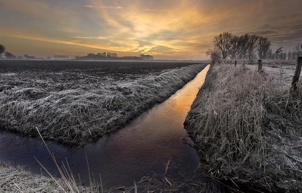 Картинка иней, поле, закат