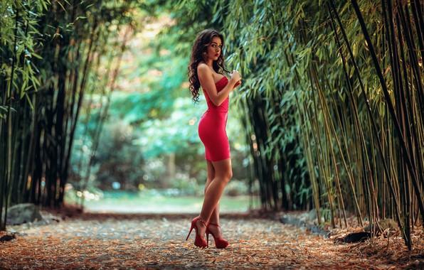 Картинка листья, природа, портрет, макияж, фигура, стройная, платье, брюнетка, прическа, туфли, красотка, стоит, в красном, аллея, …