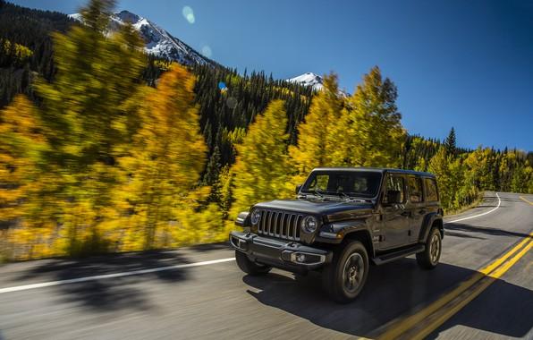 Картинка дорога, лес, небо, деревья, горы, движение, разметка, обочина, 2018, Jeep, тёмно-серый, Wrangler Sahara