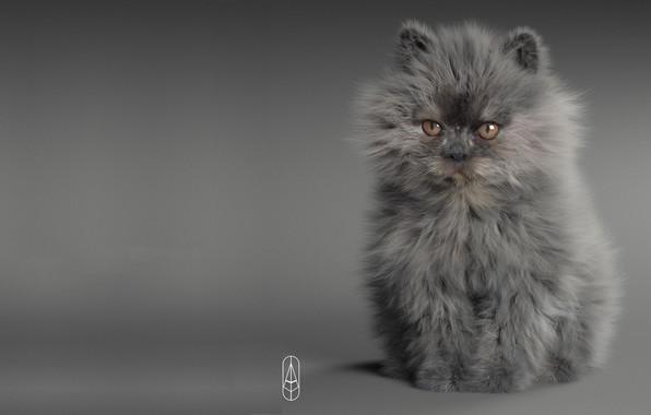 Картинка кошка, малыш, арт, котёнок, пушистик, Рендеринг, Little Devil, Anton Osipkov