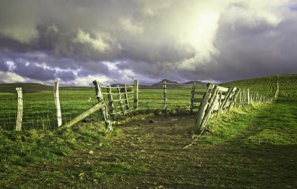 Картинка поле, пейзаж, природа, красота