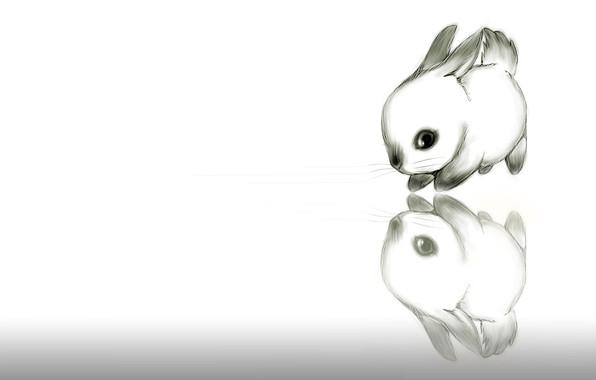 Картинка рисунок, кролик, малыш, арт, карандаш, зайчик, картинка, ушки, детская