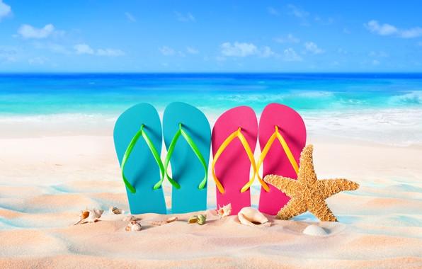 Картинка песок, море, пляж, лето, отдых, ракушки, summer, beach, каникулы, sand, сланцы, vacation, starfish, seashells