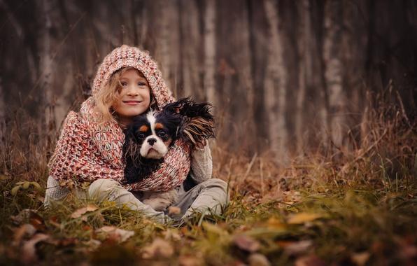 Картинка осень, трава, листья, деревья, природа, собака, шарф, капюшон, девочка, пёс