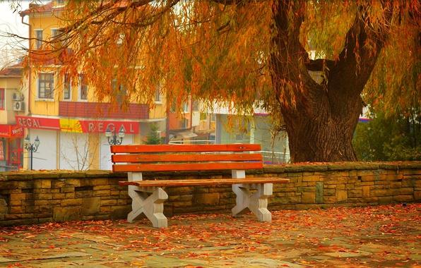 Картинка Осень, Скамейка, Улица, Fall, Листва, Autumn, Street, Colors, Leaves