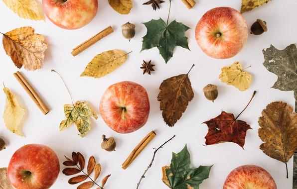 Обои осень, листья, яблоко, плоды, желуди