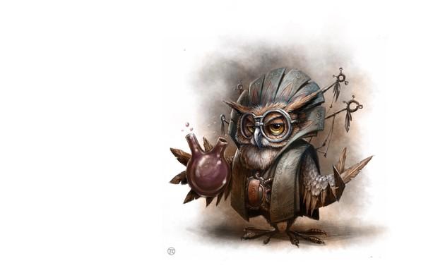 Картинка сова, арт, Illustrator, детская, алхимик, Tomek Larek, Owl Wizard - personal work