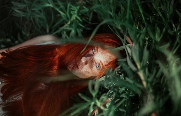 Фото обои трава, девушка, лицо, настроение, веснушки, рыжая, рыжеволосая, длинные волосы, Ronny Garcia, конопатая, Alison Sobarzo Ormeno