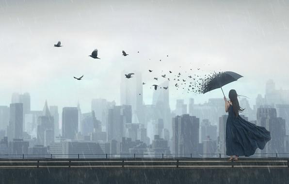 Картинка девушка, птицы, город, фантазия, дождь, зонт, арт