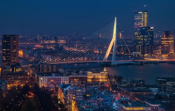 Картинка Netherlands, blue hour, cityscape, Rotterdam, Erasmus Bridge, urban scene, Erasmusbrug
