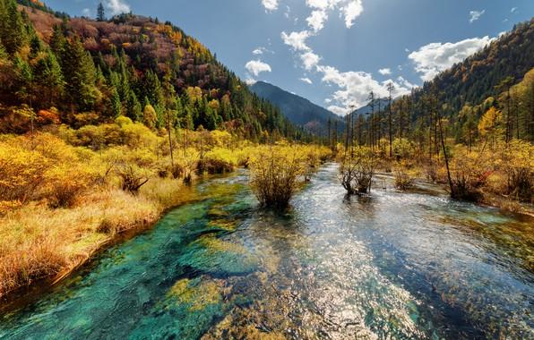 Картинка осень, лес, небо, солнце, облака, деревья, горы, парк, Китай, речка, заповедник, Jiuzhaigou, Цзючжайгоу