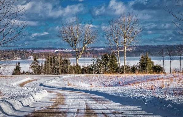 Картинка зима, дорога, лес, небо, солнце, облака, снег, деревья, озеро, США, Michigan, Leelanau