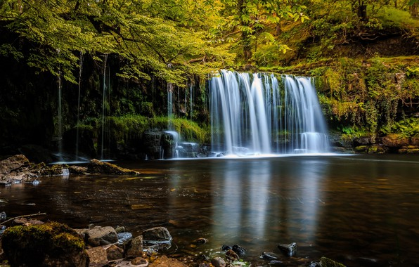 Фото обои лес, деревья, природа, водопад