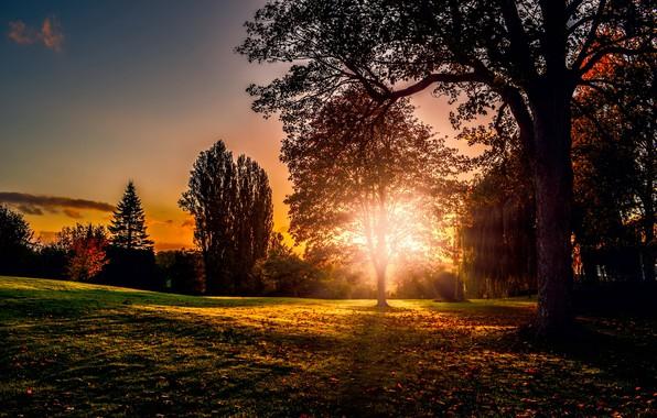 Фото обои природа, осень, закат