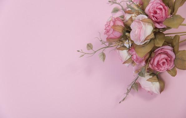 Картинка цветы, розы, розовые, бутоны, pink, flowers, roses