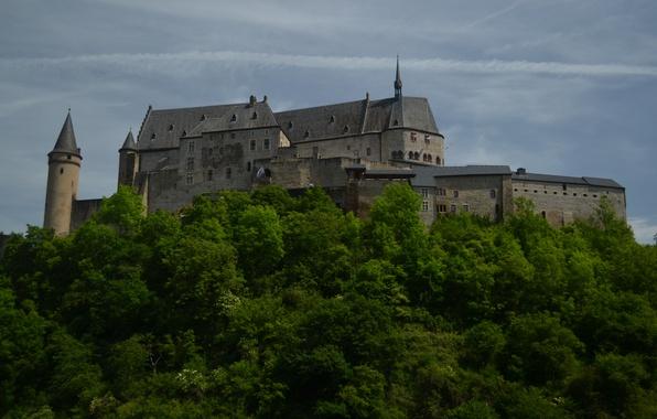 Картинка замок, Люксембург, Vianden, Luxembourg, Вианден, Vianden Castle