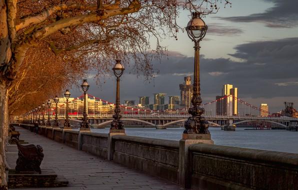 Картинка деревья, мост, река, Англия, Лондон, фонари, набережная, London, England, River Thames, Chelsea Bridge, Мост Челси, …