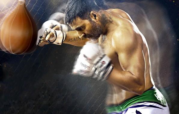 Картинка cinema, sport, fighter, man, movie, film, gloves, Brothers, boxe, Akshay Kumar
