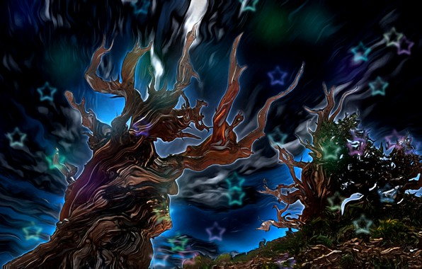 Картинка небо, звезды, абстракция, рендеринг, свечение, фантазия-арт, сказочная ночь, корявые деревья