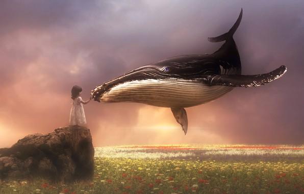 Картинка поле, небо, кит, девочка, прикосновение