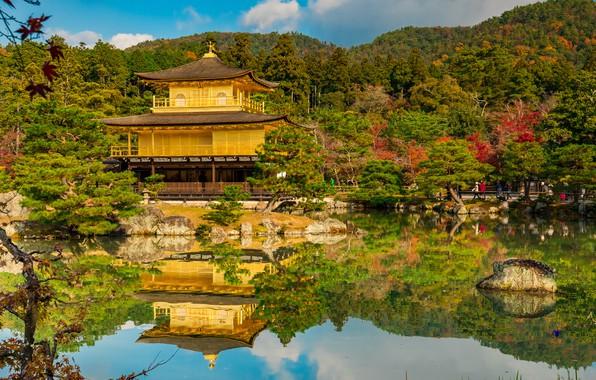 Картинка осень, пруд, отражение, Япония, сад, храм, Japan, Kyoto, Киото, Golden Pavilion, Золотой павильон, Mirror Pond, …