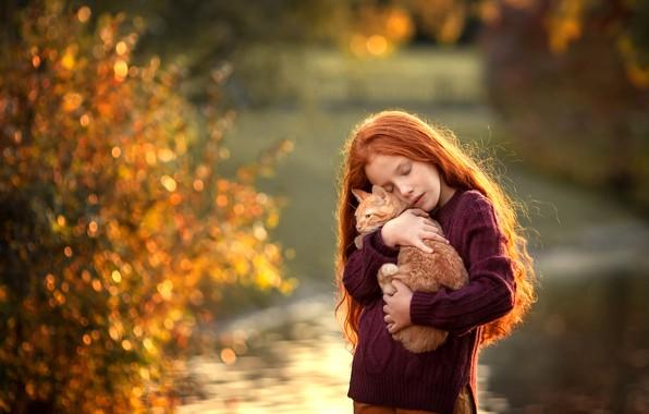 Картинка котенок, волосы, девочка, рыжие