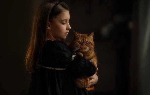 Картинка портрет, девочка, рыжий кот