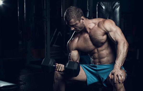 Картинка muscle, мышцы, тренировка, гантели, бицепс, тренажерный зал, gym, бодибилдер, training, abs, dumbbells, biceps, bodybuilder, спорт …