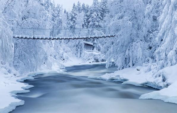 Картинка зима, снег, деревья, пейзаж, природа, река, мостик, леса, Финляндия