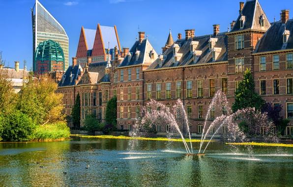 Картинка Нидерланды, фонтаны, Голландия, Гаага, The Hague, Binnenhof, Binnenhof palace