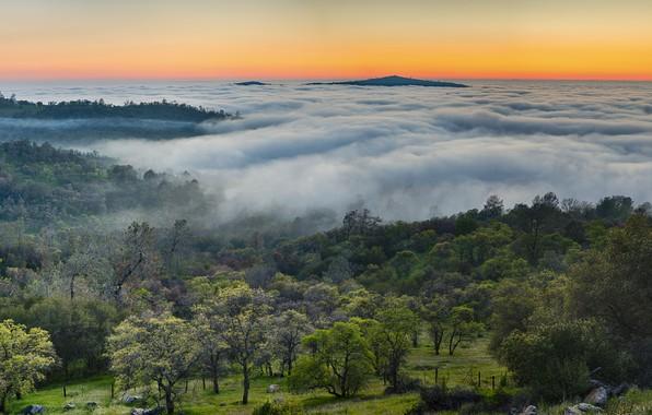 Картинка горы, туман, панорама, USA, сша, multi monitors, осень в горах, Midpines, туман в горах, горы …