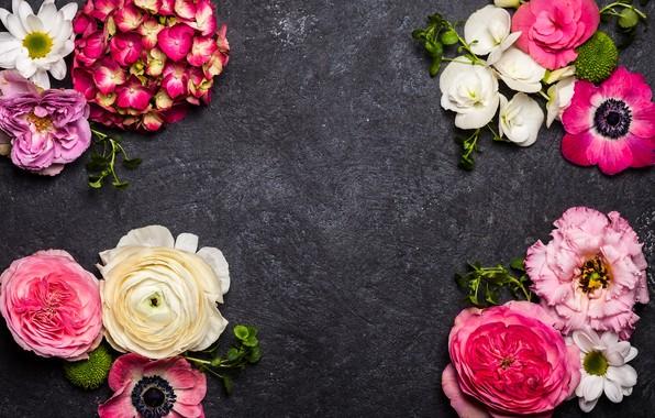 Картинка цветы, фон, flowers, декор, composition