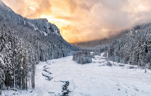 Картинка Sunset, winter, snow, national park, Nisqually River valley, Mount Rainie