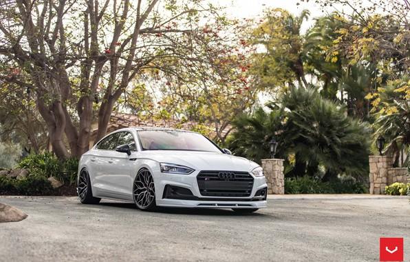 Картинка Audi, Hybrid, Forged, Sportback, Vossen, Wheels, HF-2
