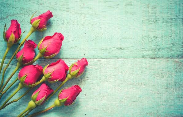 Картинка цветы, розы, розовые, бутоны, fresh, wood, pink, flowers, beautiful, spring, roses