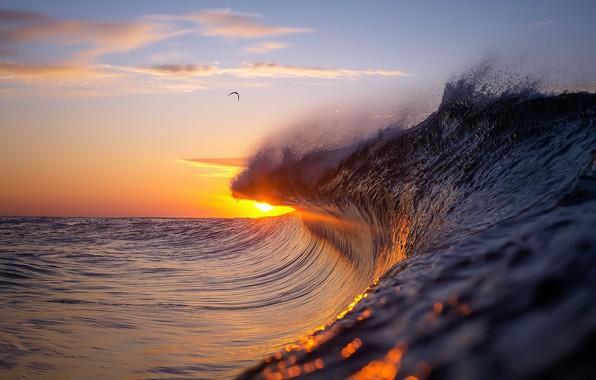 Картинка море, волны, небо, вода, солнце, облака, свет, природа, блики, океан, волна, чайка