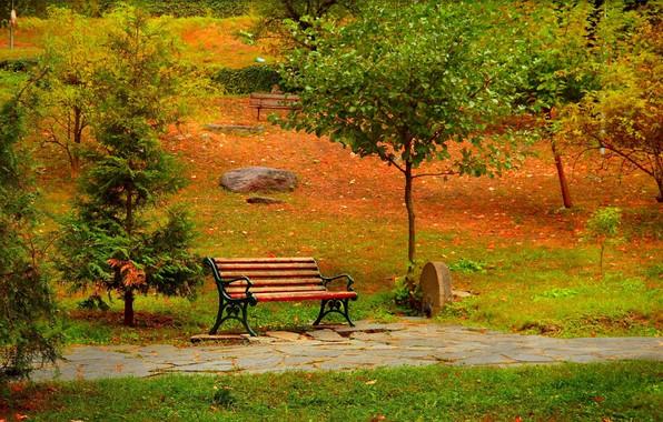 Картинка Осень, Скамейка, Парк, Fall, Park, Autumn, Colors