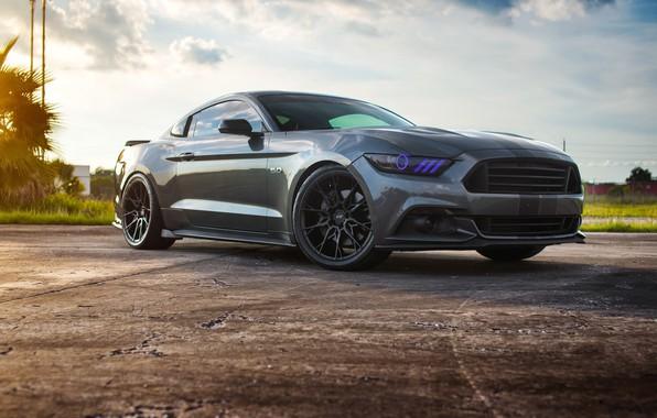 Картинка Mustang, Ford, 5.0, Wheels, Niche
