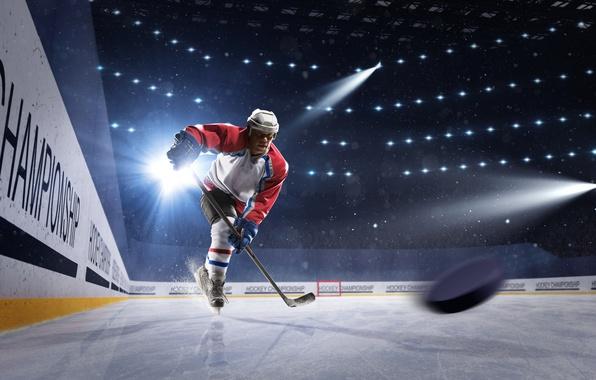 Картинка свет, спорт, лёд, перчатки, шлем, спортсмен, мужчина, клюшка, хоккей, шайба, униформа, стадион, прожектора, хоккеист, коньки, …