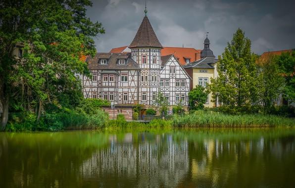 Картинка деревья, дом, река, здание, Германия, Germany, Тюрингия, Thuringia, Bad Salzungen, Бад-Зальцунген, Werra River, река Верра