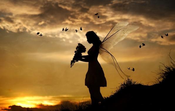 Картинка девушка, закат, птицы, бабочка