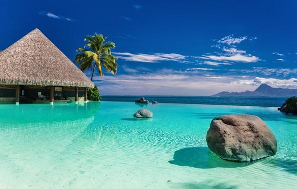 Картинка море, пляж, природа, тропики, пальмы, берег, домик, голубое небо