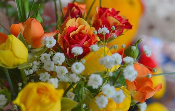 Картинка Цветы, Букет, Розы, Flowers, Roses, Bouquet, гипсофила