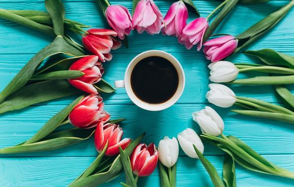 Картинка цветы, кофе, colorful, чашка, тюльпаны, розовые, white, белые, fresh, wood, pink, flowers, beautiful, tulips, coffee …