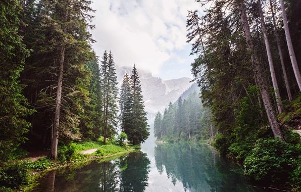 Картинка лес, вода, облака, деревья, горы, отражение, река, скалы, дымка, тропинка