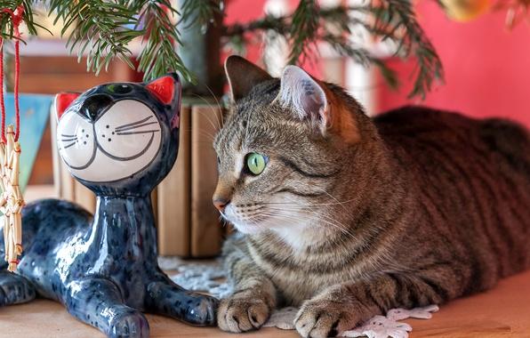 Картинка глаза, кот, елка, статуэтка, полосатый