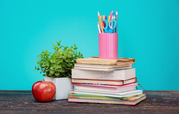 Картинка стол, фон, красное, растение, книги, яблоко, карандаши, тетради, ножницы