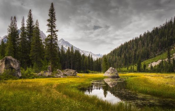 Картинка лес, горы, природа, озеро, река, камень