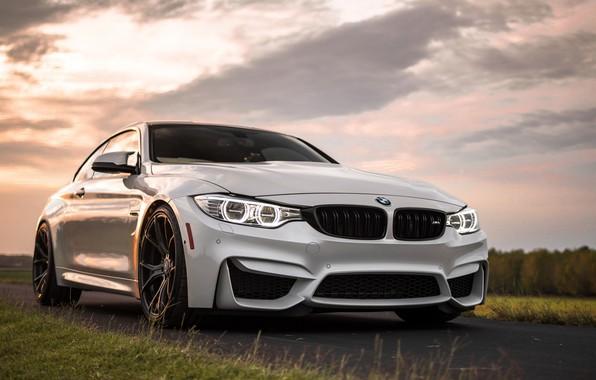 Картинка BMW, white, grass, road