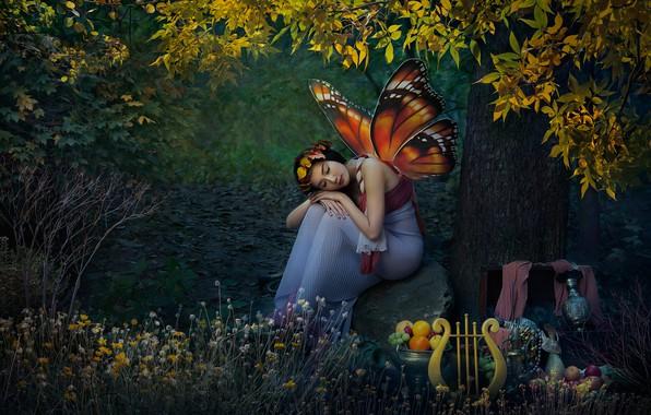 Картинка лес, девушка, природа, бабочка, эльф, крылья, фэнтези, арфа, азиатка